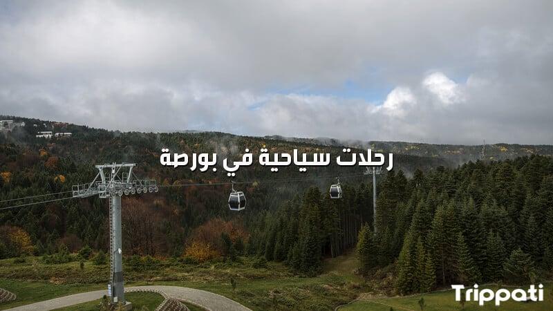 رحلات سياحية في بورصة عنجد حجز سائق امين في بورصه