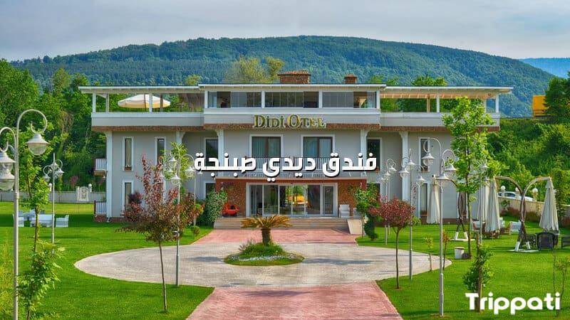 مبنى فندق ديدي صبنجة