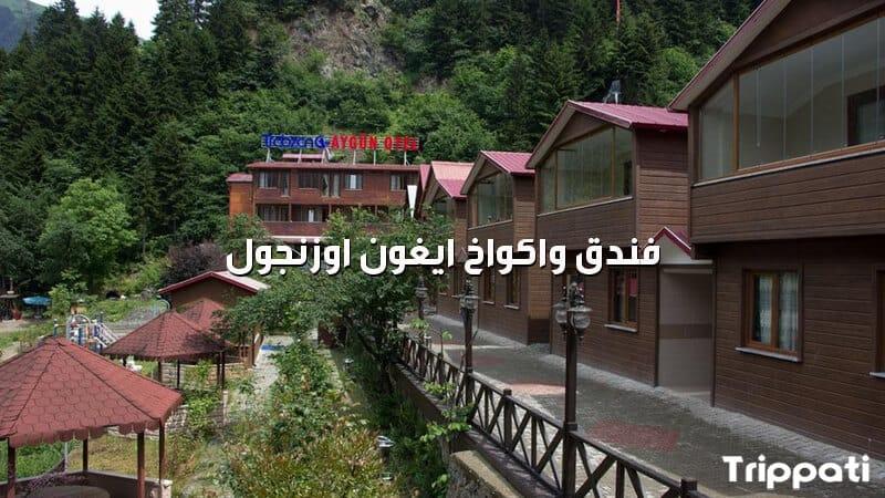 فندق واكواخ ايغون اوزنجول , عروض سياحية لتركيا من قطر