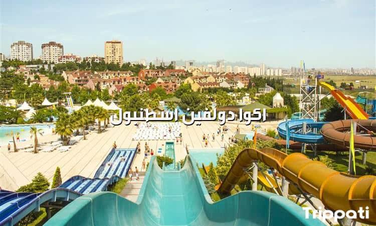 اكوا دولفين اسطنبول