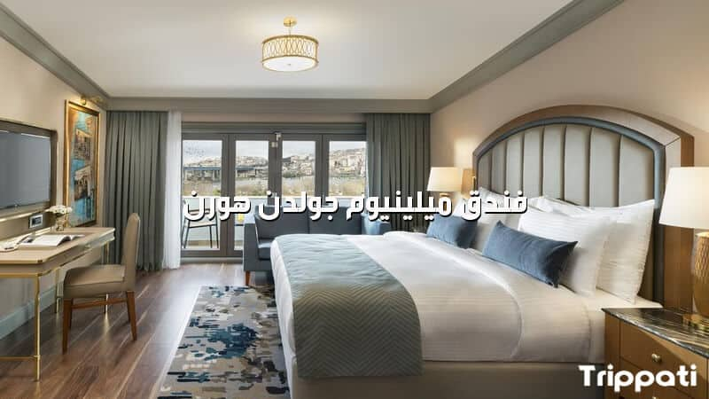 فندق ميلينيوم جولدن هورن , جدول برنامج سياحي لتركيا