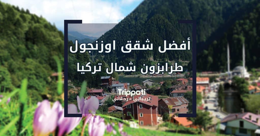افضل شقق اوزنجول طرابزون شمال تركيا
