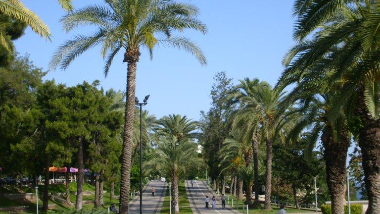 حديقة كاراليجلو بارك