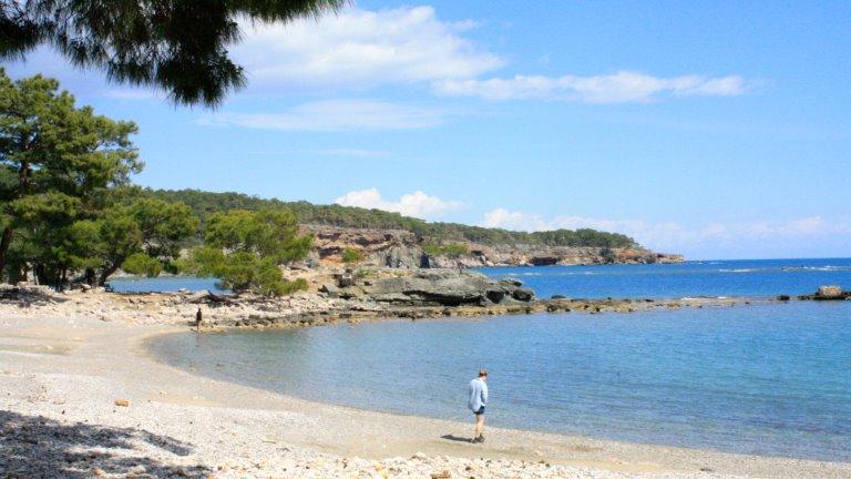 شاطئ فاسيليس