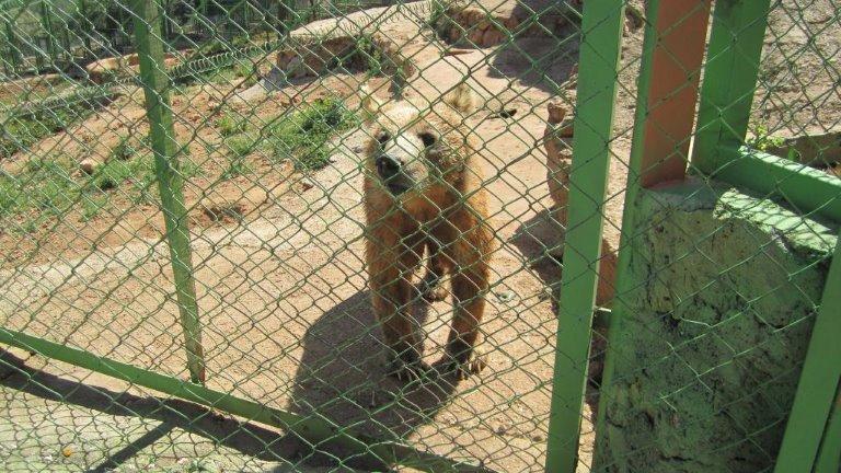 حديقة حيوانات أنطاليا - الأماكن في تركيا للعوائل